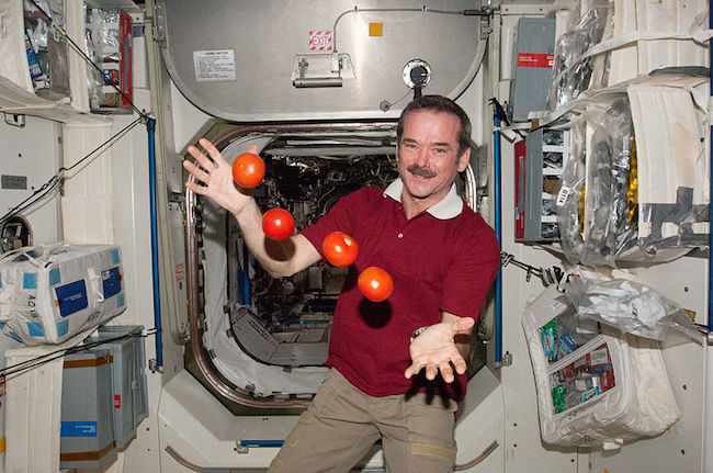 Chris Hadfield juggling tomatoes
