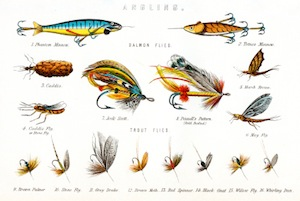 image of fishing lures and hooks