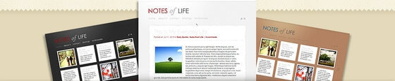 DailyNotes Tumblr style WordPress Theme